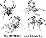 vector drawings sketches... | Shutterstock .eps vector #1285212352