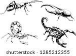 vector drawings sketches... | Shutterstock .eps vector #1285212355