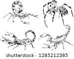 vector drawings sketches... | Shutterstock .eps vector #1285212385