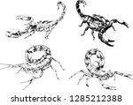vector drawings sketches... | Shutterstock .eps vector #1285212388