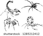 vector drawings sketches... | Shutterstock .eps vector #1285212412