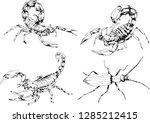 vector drawings sketches... | Shutterstock .eps vector #1285212415