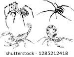 vector drawings sketches... | Shutterstock .eps vector #1285212418