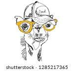 camel with yellow sunglass  | Shutterstock . vector #1285217365