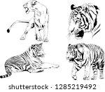 vector drawings sketches... | Shutterstock .eps vector #1285219492