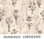 botanical victorian seamless... | Shutterstock .eps vector #1285423345
