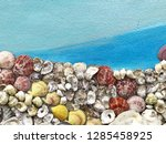 mixed colorful sea shells... | Shutterstock . vector #1285458925