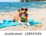 Relaxing Dog At The Beach With...