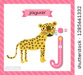 Letter J Lowercase Cute...