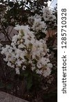 natural  beautiful  earth    Shutterstock . vector #1285710328
