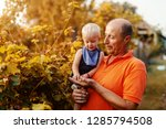grandfather holding grandson... | Shutterstock . vector #1285794508