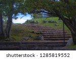 flight of steps natur parc   Shutterstock . vector #1285819552