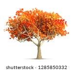 orange autumn maple tree... | Shutterstock . vector #1285850332