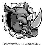 A Rhinoceros Or Rhino Angry...