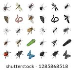 different kinds of insects... | Shutterstock .eps vector #1285868518
