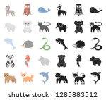 an unrealistic animal cartoon...   Shutterstock .eps vector #1285883512
