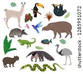 animal in south america vector... | Shutterstock .eps vector #1285951072