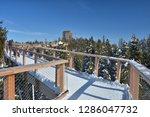 the treetop walk bachledka in... | Shutterstock . vector #1286047732