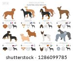 hunting dogs collection... | Shutterstock .eps vector #1286099785