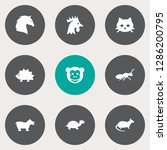set of 9 animal icons set.... | Shutterstock .eps vector #1286200795