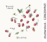 hand drawn wild strawberries...   Shutterstock .eps vector #1286204965