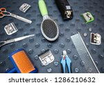 set of professional animal... | Shutterstock . vector #1286210632