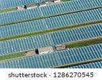 greenhouses in summer | Shutterstock . vector #1286270545