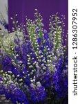 various flowers in different...   Shutterstock . vector #1286307952