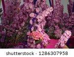 various flowers in different...   Shutterstock . vector #1286307958