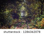 old railroad in the forest | Shutterstock . vector #1286362078