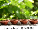 plant growth baby plants | Shutterstock . vector #128640488