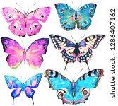 beautiful color butterflies set ...   Shutterstock . vector #1286407162