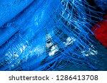bright blue color plastic... | Shutterstock . vector #1286413708