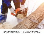 close up of woodcutter sawing... | Shutterstock . vector #1286459962