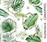 green tropical palm   fern... | Shutterstock . vector #1286639452