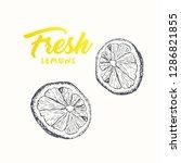 Fresh Lemons Vector Banner...