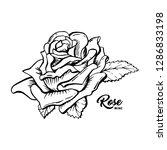 rose wine flower hand drawn... | Shutterstock .eps vector #1286833198