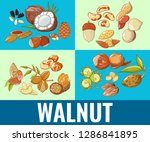 walnut concept banner. cartoon... | Shutterstock .eps vector #1286841895