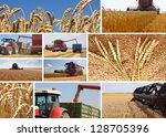 Wheat harvest - collage - stock photo