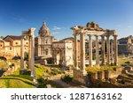 The Roman Forum View  City...