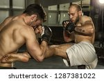 side view of two mixed martial... | Shutterstock . vector #1287381022