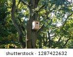 ecological birdhouse. beige... | Shutterstock . vector #1287422632