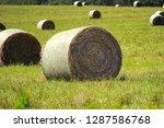hay bales sitting in a field... | Shutterstock . vector #1287586768