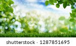 green nature background with... | Shutterstock . vector #1287851695