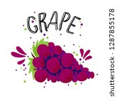 vector hand draw red grape... | Shutterstock .eps vector #1287855178