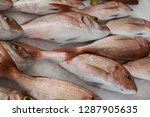 catch of the day on fresh fish... | Shutterstock . vector #1287905635