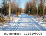 ski track at winter forest in... | Shutterstock . vector #1288199008