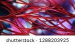 blood vessels  veins and...   Shutterstock . vector #1288203925