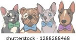 pets with bow ties  graphic... | Shutterstock .eps vector #1288288468
