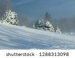 Panoramic View Of Winter...